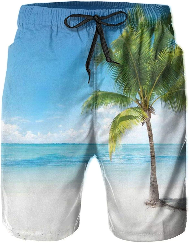 Caribbean Maldives Beach Island Sea Ocean Palm Trees Artwork Print Mens Swim Trucks Shorts with Mesh Lining,M