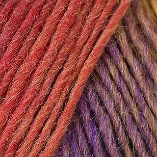 Crystal Palace Mini Mochi Yarn 105 Tapestry Rainbow