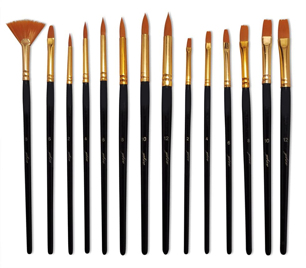yohino Multi Purpose Paint Brush Set (14 Piece Set), Use for Acrylic, Oil, Watercolor