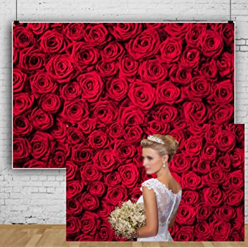 Amazon Com Laeacco 10x6 5ft Red Roses Background Vinyl Photography Background Blossoms Roses Wall Texture Lovers Girls Children Kids Photos Video Studio Props Camera Photo