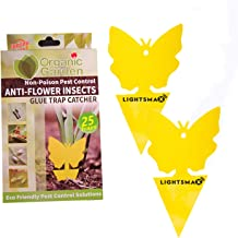 25 LIGHTSMAX Sticky Fruit Fly and Gnat Trap Yellow Sticky Bug Cards | Traps for..
