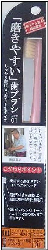 分類神秘的な曖昧な磨きやすい歯ブラシ(フラット) 1P*12本入り