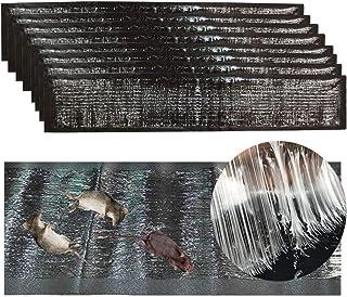 Trapweb 8 trampas de Ratas y ratón Muy eficaz - 120 cm x 28 cm