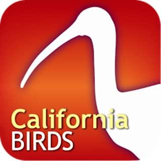 Audubon Bird Guide: California