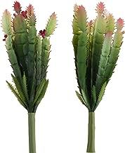 Best large artificial cactus plants Reviews