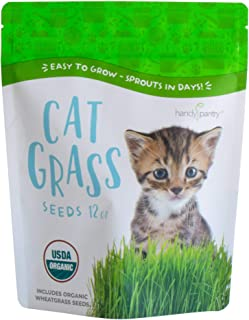 Best wheatgrass for dogs Reviews