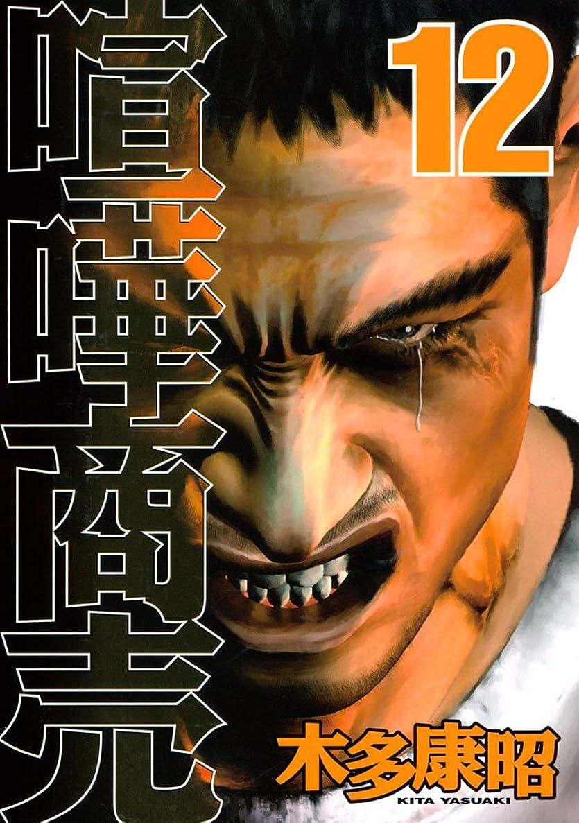 ほこりハーフ印象喧嘩商売(12) (ヤングマガジンコミックス)
