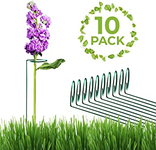 greenpeas 36 inch Pack of 10 pcs | Plant Stakes and Supports | Plant Prop Used as Plant Support | Perfect Choice for Flower and Plant stem Support for Indoor and Outdoor Garden