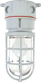 Class 1, Division 2 Chemical Resistant Incandescent Light - 100 Watts - Non-Metallic (-120 Volts-Ceiling)