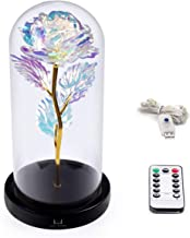 Louis Garden Beauty and The Beast Rose Kit, Colorful Gold Foil Rose and Led Light in..