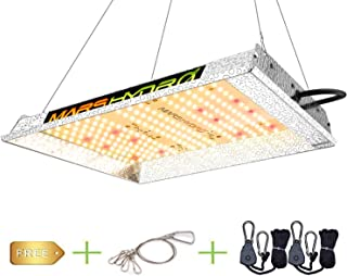 Best small led grow Reviews