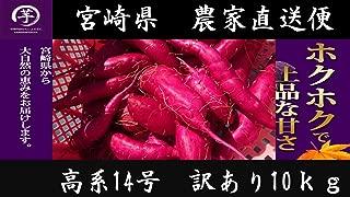 宮崎県産『高系14号』紅芋 新物 訳あり S~Mサイズ 10kg さつまいも 芋 九州産 宮崎 の サツマイモ