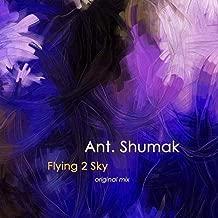 Flying 2 Sky
