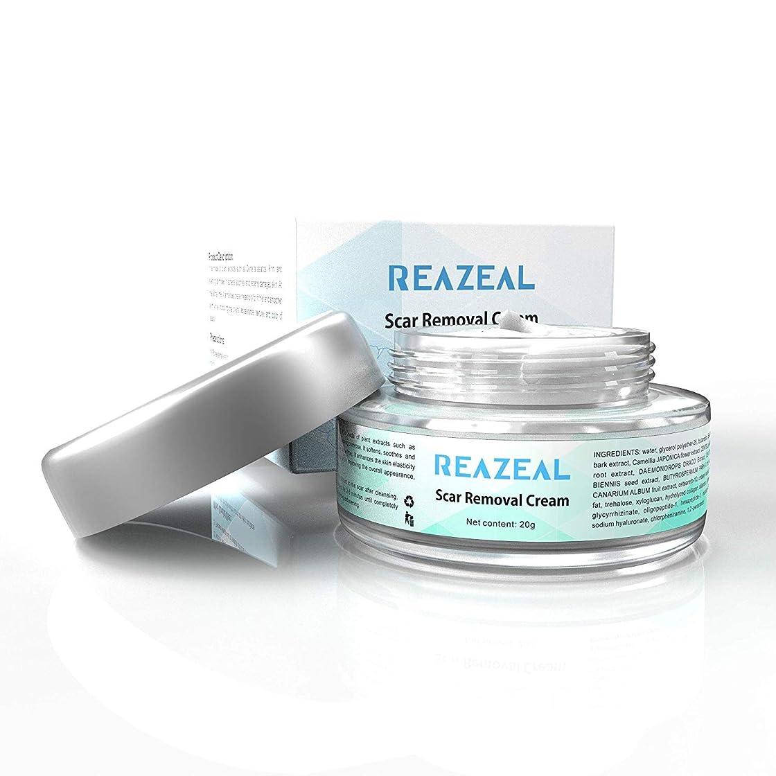 束ねる説教する自然Scar Cream Acne Scar Removal Cream for Old & New Scars on Face & Body Scar Treatment for Cuts Natural Herbal Extracts Formula Burns Repair,Face Skin Repair Cream 【並行輸入品】