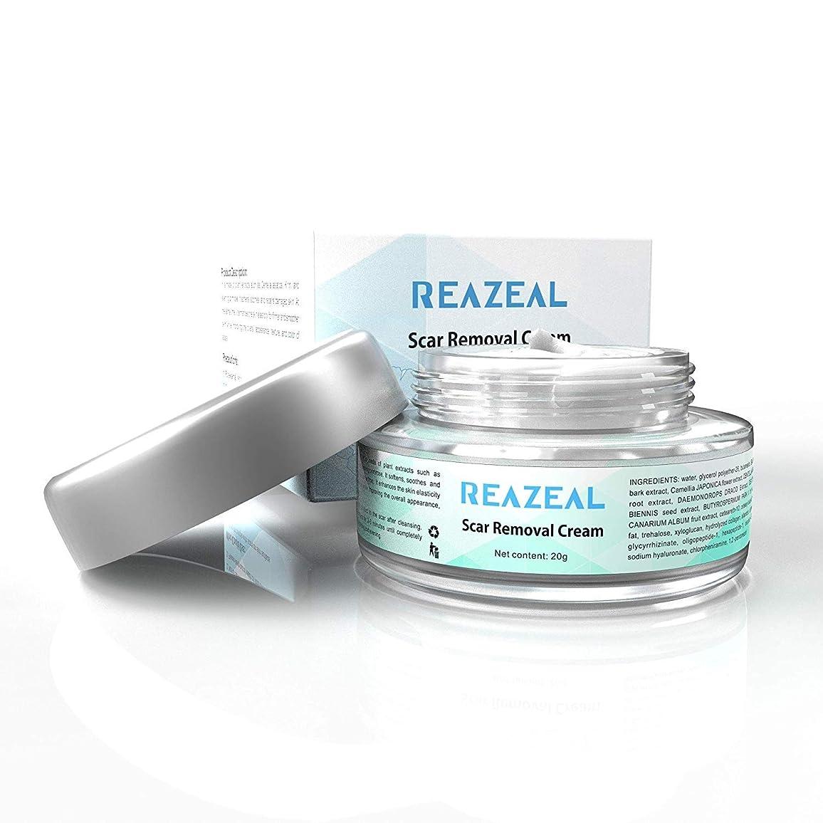 七面鳥傷つける光景Scar Cream Acne Scar Removal Cream for Old & New Scars on Face & Body Scar Treatment for Cuts Natural Herbal Extracts Formula Burns Repair,Face Skin Repair Cream 【並行輸入品】