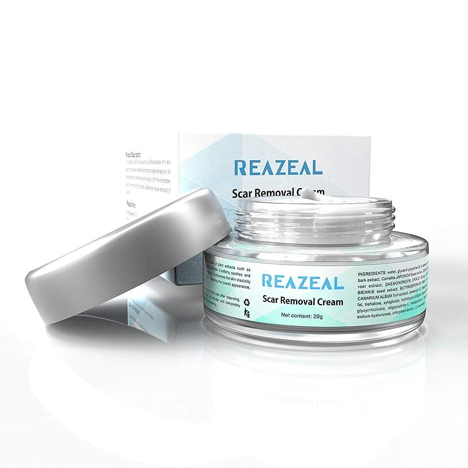 上記の頭と肩徒歩ででScar Cream Acne Scar Removal Cream for Old & New Scars on Face & Body Scar Treatment for Cuts Natural Herbal Extracts Formula Burns Repair,Face Skin Repair Cream 【並行輸入品】