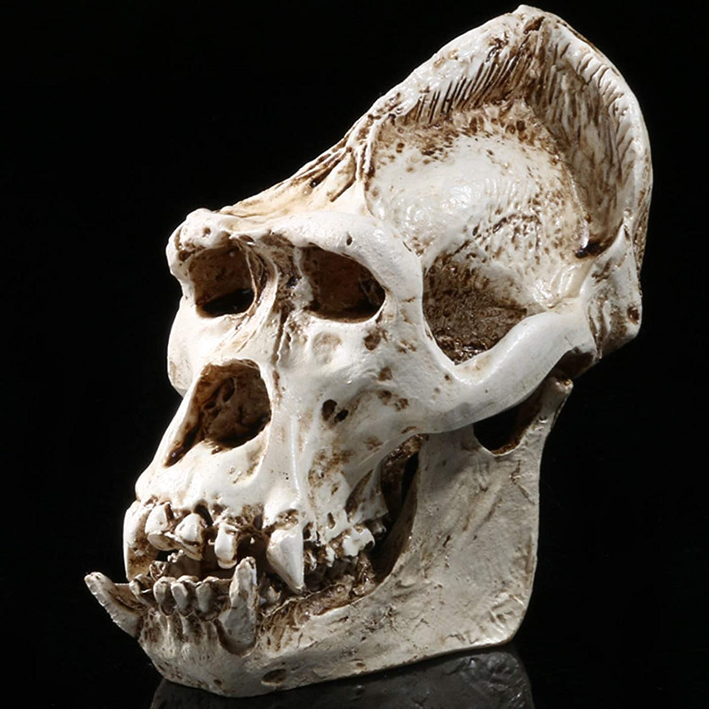 ZYLE Resin Gorilla overseas Skeleton Manufacturer OFFicial shop Sculpture Chimpanzee Head Figurines