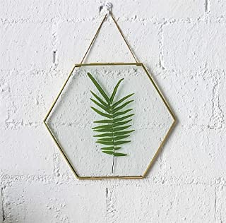 Art India Collections Home Decor Glass & Metal Hexagonal Hanging Picture Frame for Wall Decoration, with 2 Sides Glass - 6...