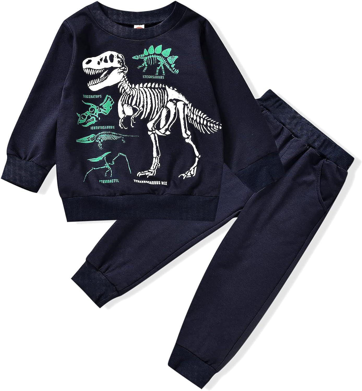 Toddler High order Baby Boy Sweatshirt Outfits Top Dinosaur Long Sleeve Direct store Pan