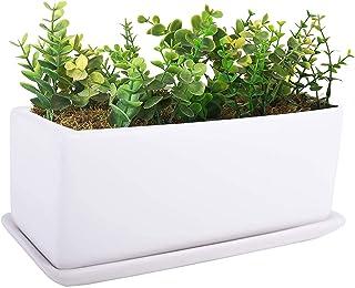 VanEnjoy 10 Inch White Rectangle Ceramic Succulent Planter Pot Decorative Cactus Plant Pot Flower Container with Ceramic Tray
