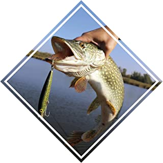 Pike Fishing Vinyl Bumper Sticker Boat Decal Fishing Tackle Boxes Stickers Fish Decals Car Fishing Boating Tackle Box Funny Stickers Bass Fishing Decals for Trucks USA America S027