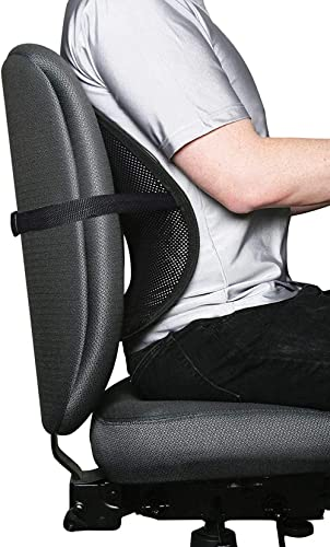 COIF Car Back Pain Relief Lower Back Support for Chair Back Rest for Office Chair Lumbar Support Orthopedic Cushion f...