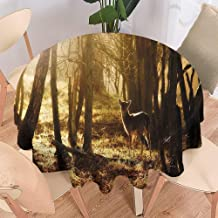 Merry Christmas,Christmas Round Tablecloth,Home Round Tablecloth,Wrinkle Free Tablecloth,Cabin Decor,Young Deer at Sunset in The Forest National Park Outdoors Netherlands Photo-70