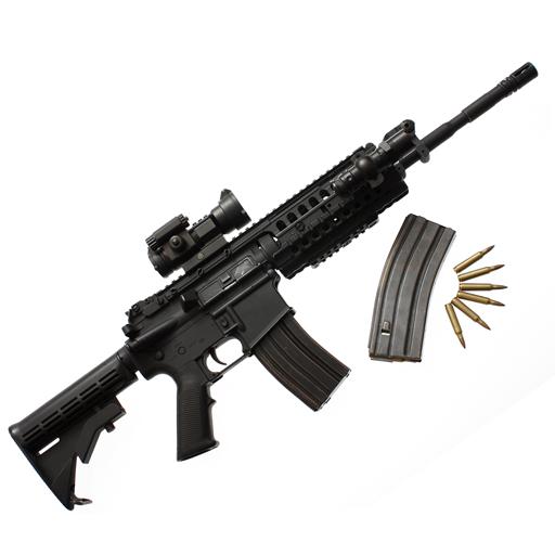Assault Rifle Buil