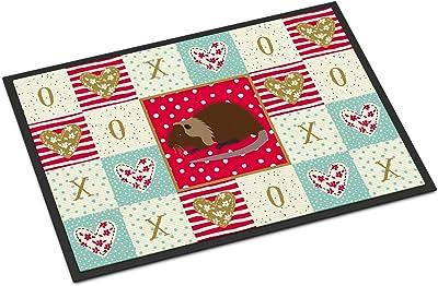 Caroline's Treasures Coypu Nutria River Rat Love Indoor or Outdoor Mat 24x36 doormats, Multicolor
