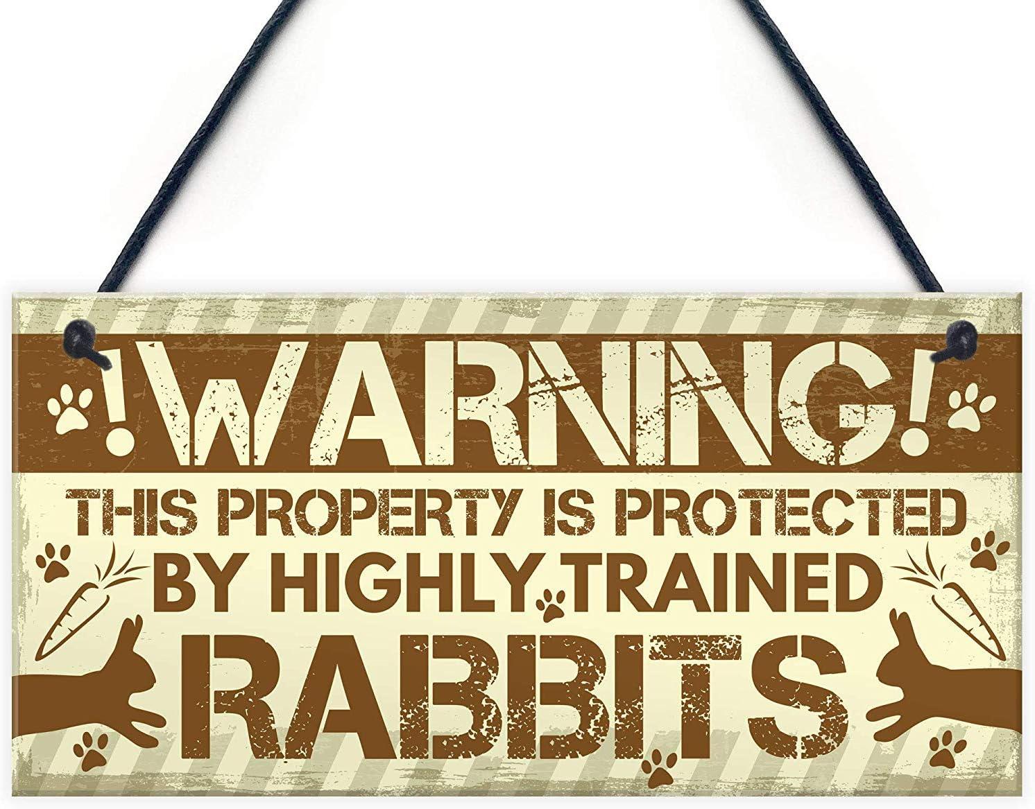 Meijiafei Beware of The Rabbit Sign Hangi Door Discount is also Max 42% OFF underway Bunny