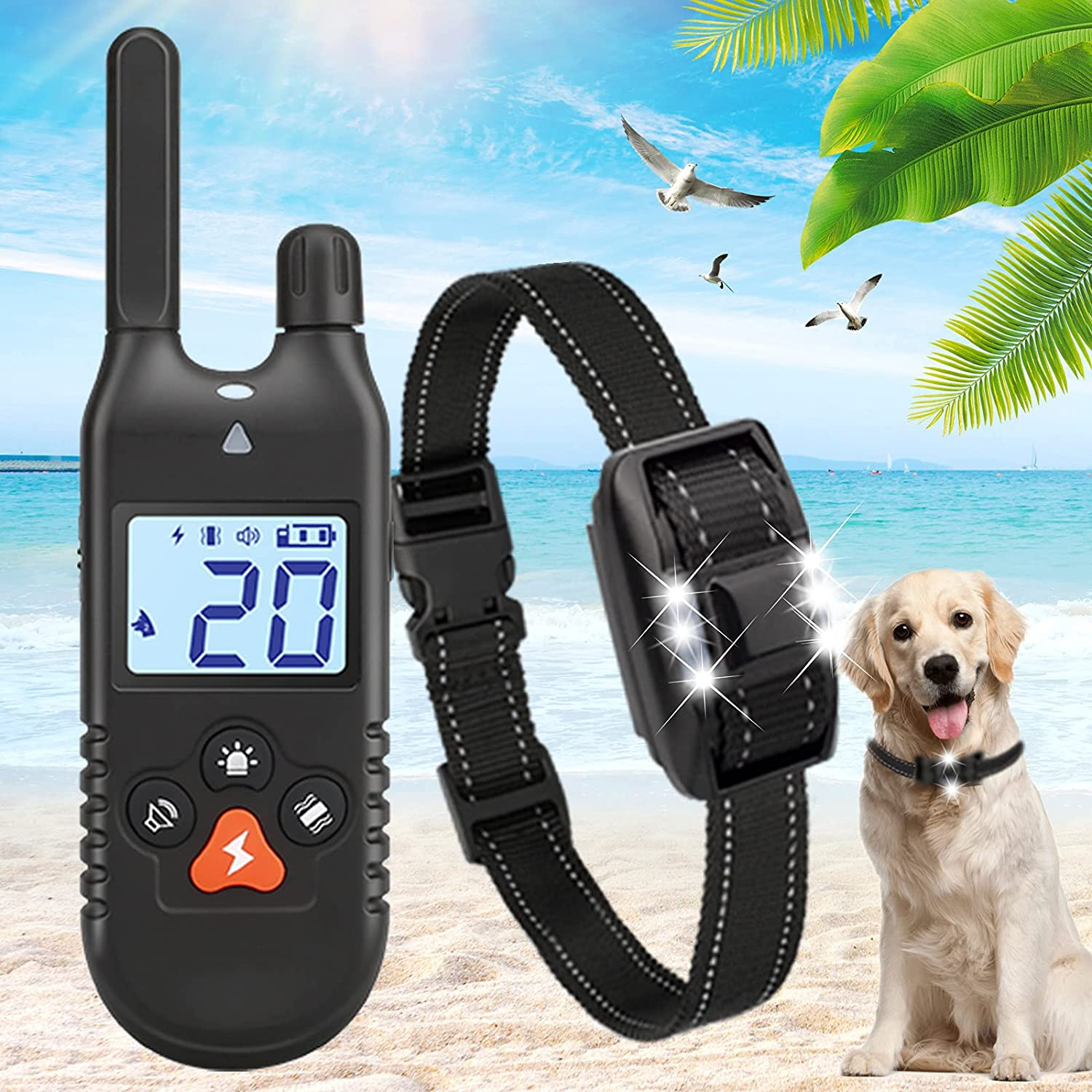 iTecFreely Dog Training Collar Remote Rapid rise Shock Electronic with Overseas parallel import regular item