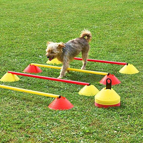Mini-Hürden 5er Set, rote Markiermulden und rote Stangen 100 cm, für Agility-Training