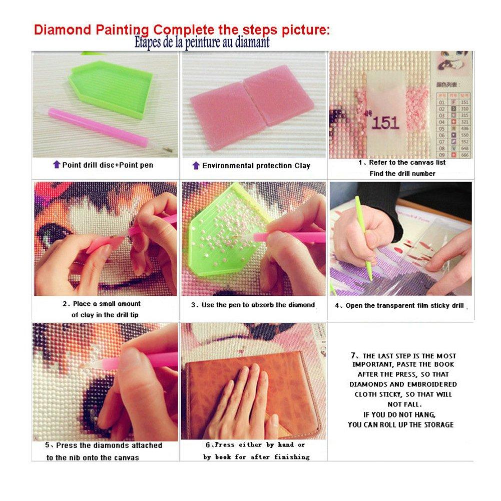 decoraci/ón del hogar Innova Tion Kit DIY de pintura de diamante 5D para punto de cruz o bordados gato 30 x 40 cm
