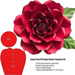 giant paper flower kits
