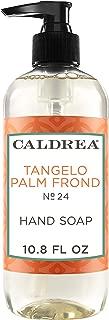Caldrea Tangelo Palm Frond Hand Soap 10.8 oz