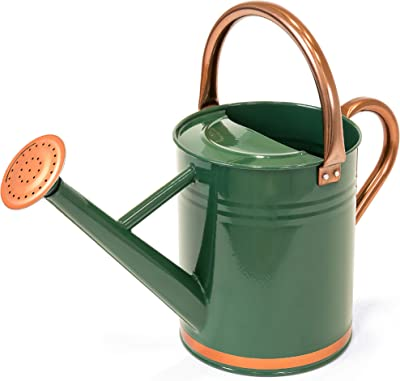 Best Choice Products 1-Gallon Lightweight Galvanized Steel Gardening Watering Can w/O-Ring, Top Handle, and Copper Accents