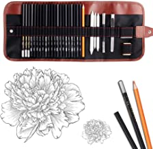 Dowswin 29 Pieces Pen Charcoal Drawing Set Sketching Pencil Set of Graphite Pencils Eraser Craft Knife Pencil Extender Rol...