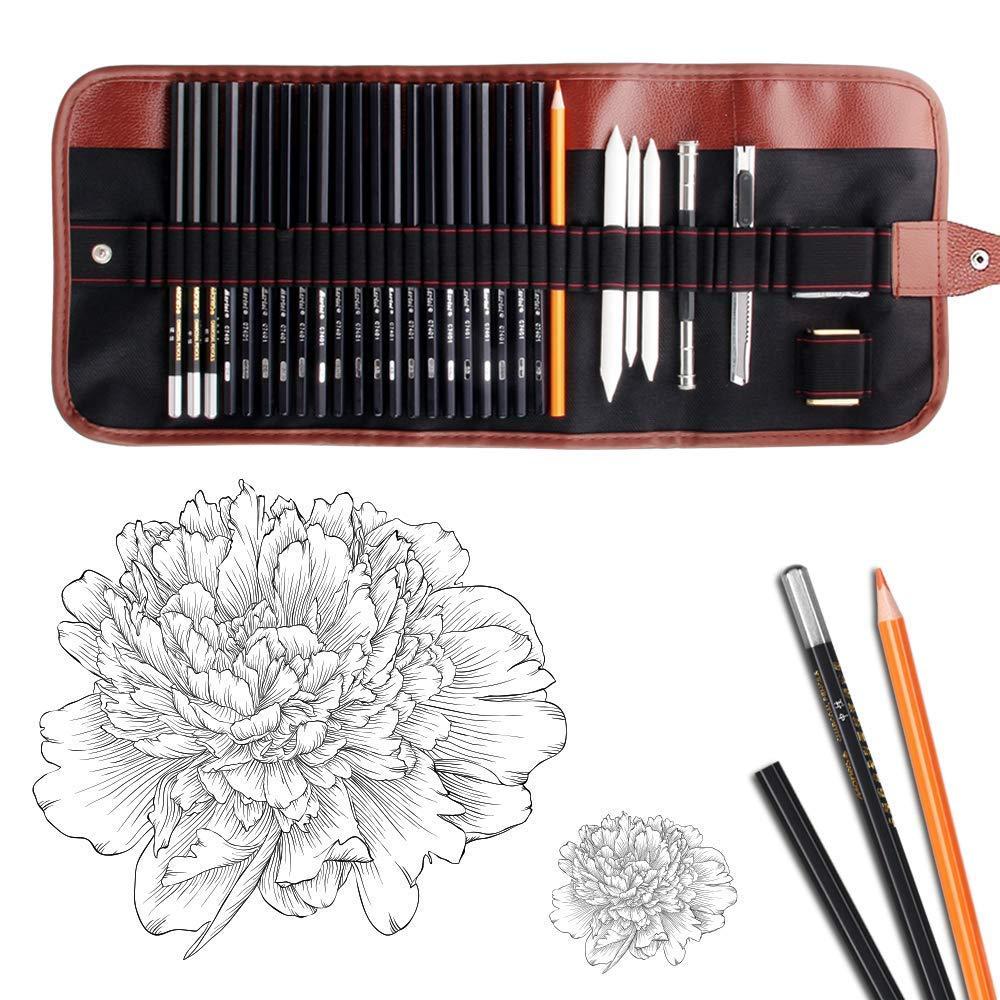Dowswin Charcoal Sketching Extender Beginners