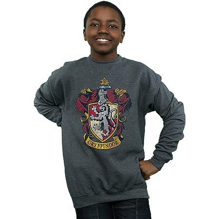 HARRY POTTER niños Gryffindor Distressed Crest Camisa De Entrenamiento 12-13 Years Oscuro Heather