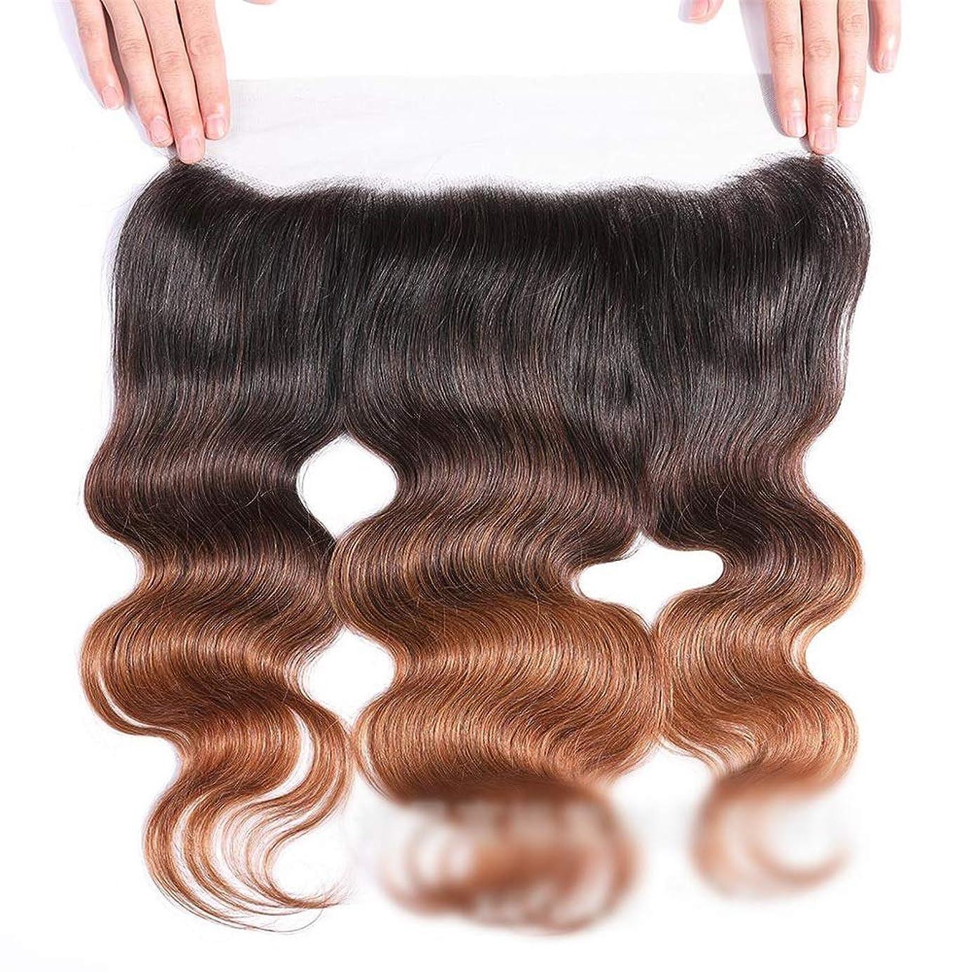 ミリメーターシーケンス鉄道HOHYLLYA 13x4レースの閉鎖ブラジルの実体波人間の髪の毛の自由な部分ブラウンナチュラル探して茶色のかつら長い巻き毛のかつら、 (色 : ブラウン, サイズ : 16 inch)