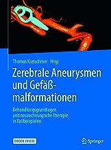 Zerebrale Aneurysmen und Gefäßmalformationen: Behandlungsgrundlagen und neurochirurgische Therapie in Fallbeispielen (German Edition)