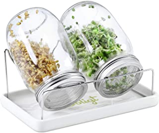 Complete Mason Jar Sprouting Kit - 2 Wide Mouth Quart Sprouting Jars with 316 Stainless Steel Sprouting Lids, Drip Tray an...