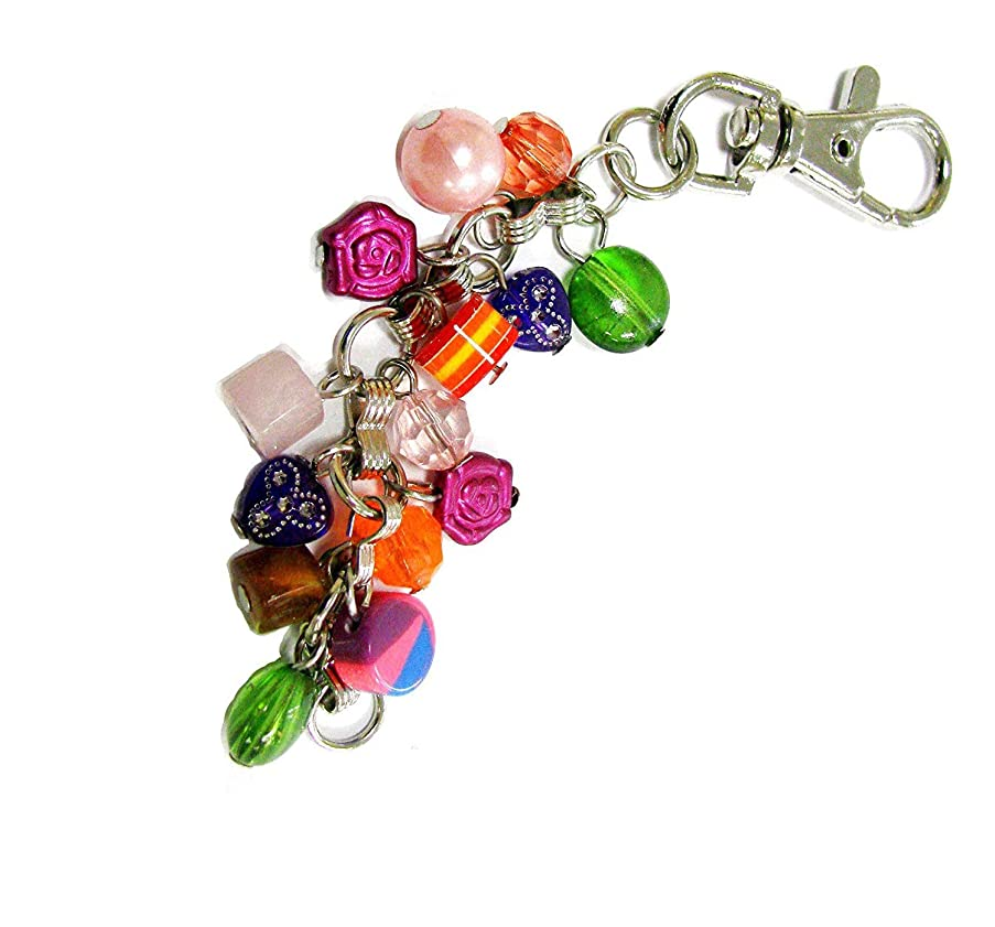 Linpeng Multi-Purpose Keychain with with Various Shapes Colorful Beaded Dangles, Mixed