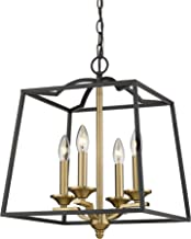 Best cage foyer light Reviews