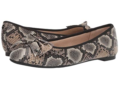 Circus by Sam Edelman Connie (Buff Taupe) Women
