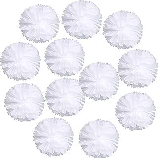 Landisun Wedding Birthday Party Room Decoration Tissue Paper Flower Poms(10