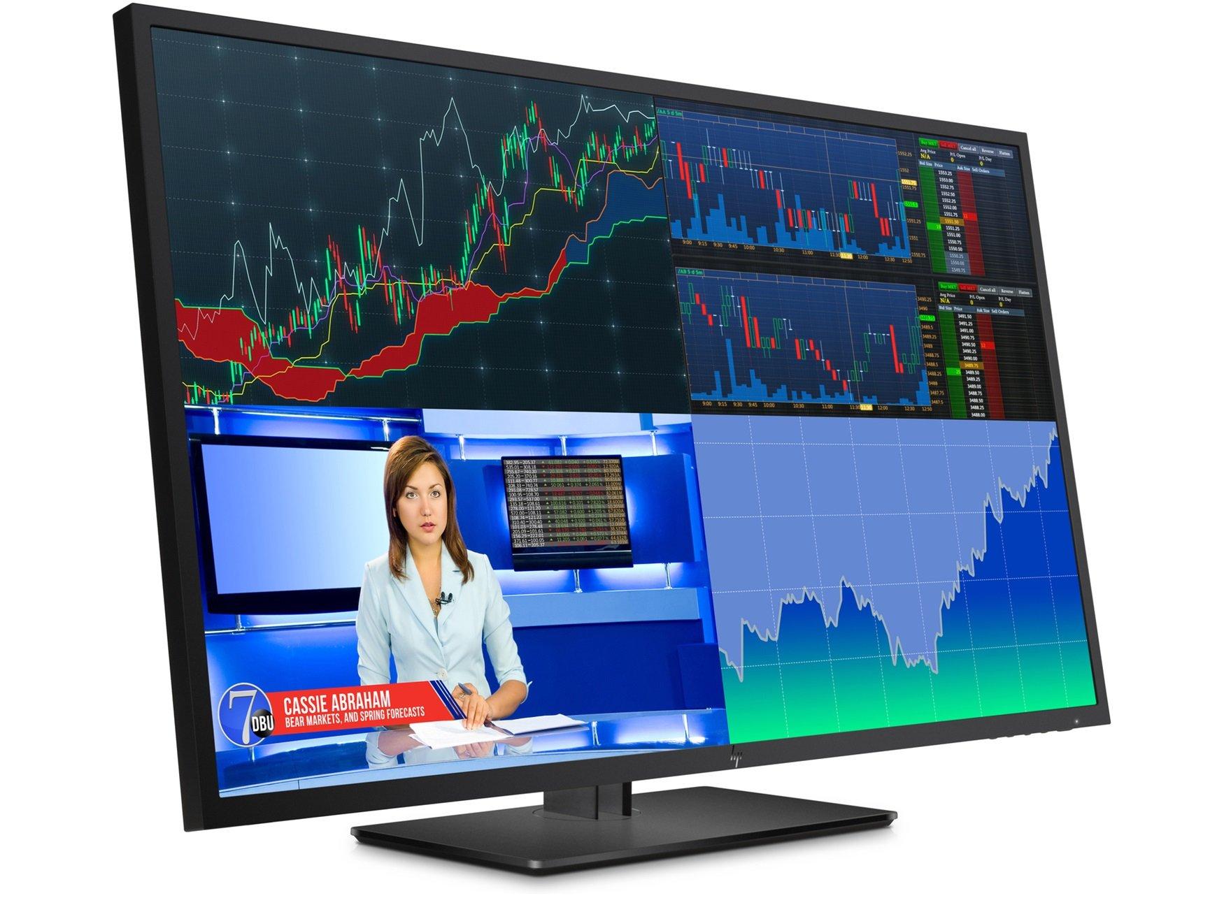 "HP Z43 4K - Monitor profesional de 43"" ajustable en altura (UHD ..."