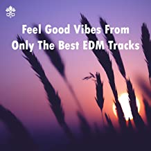 Feel Good Vibes From Only The Best EDM Tracks