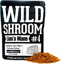 Lion's Mane Mushroom Extract 10:1 Superfood Powder by Wild Foods | Fruiting Bodies Only | Adaptogenic Nootropic Herb for Focus, Memory and Health (Two 4 Ounce)