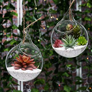 Set of 2 Decorative Clear Glass Globe/Hanging Air Plant Terrarium Planter/Candle Holder - MyGift